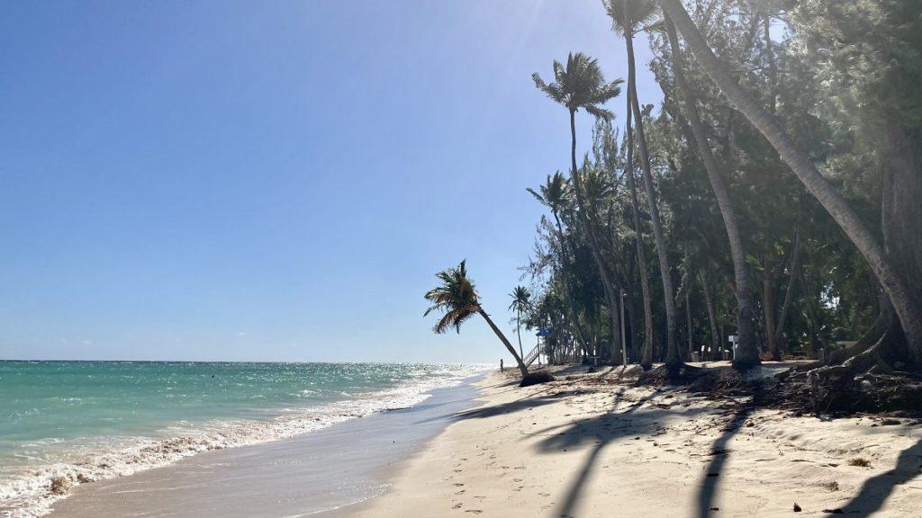 где лучше на севере доминиканы