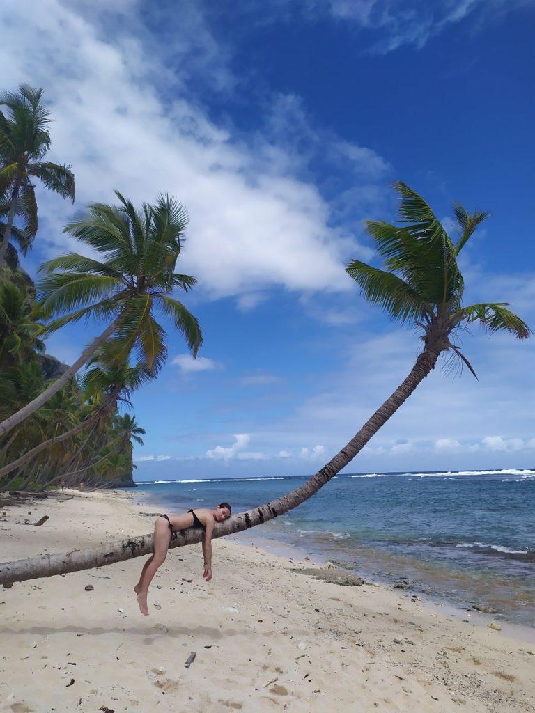 пляж фронтон и мадама пальмы и песок