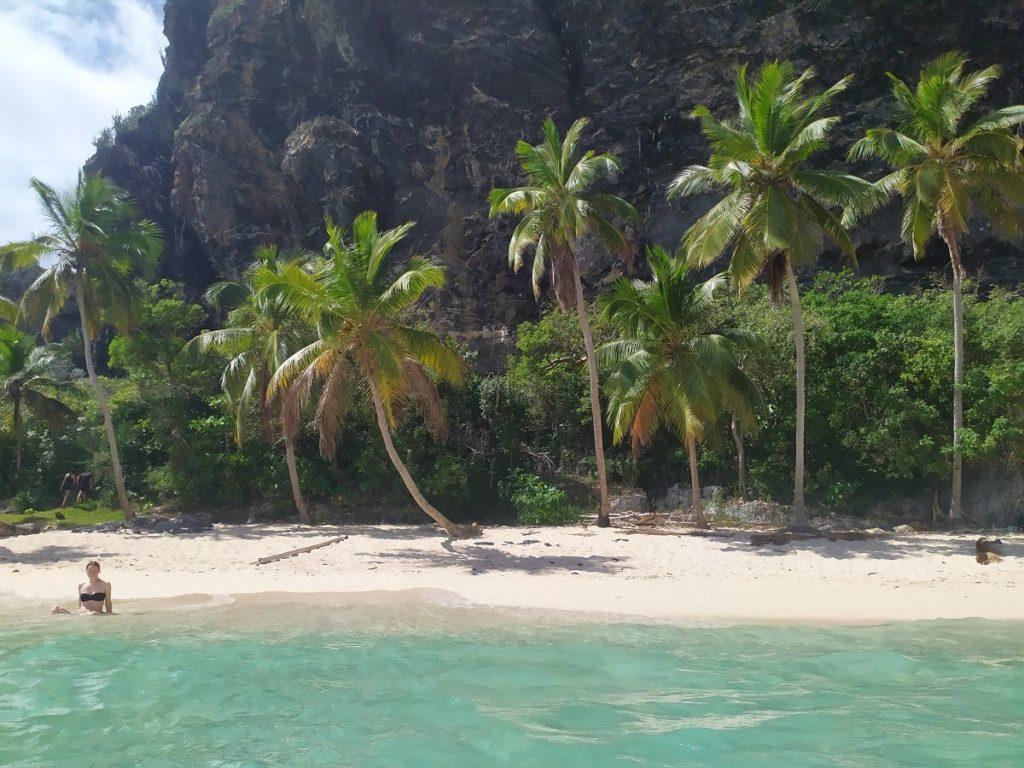 пляж фронтон и пальмы