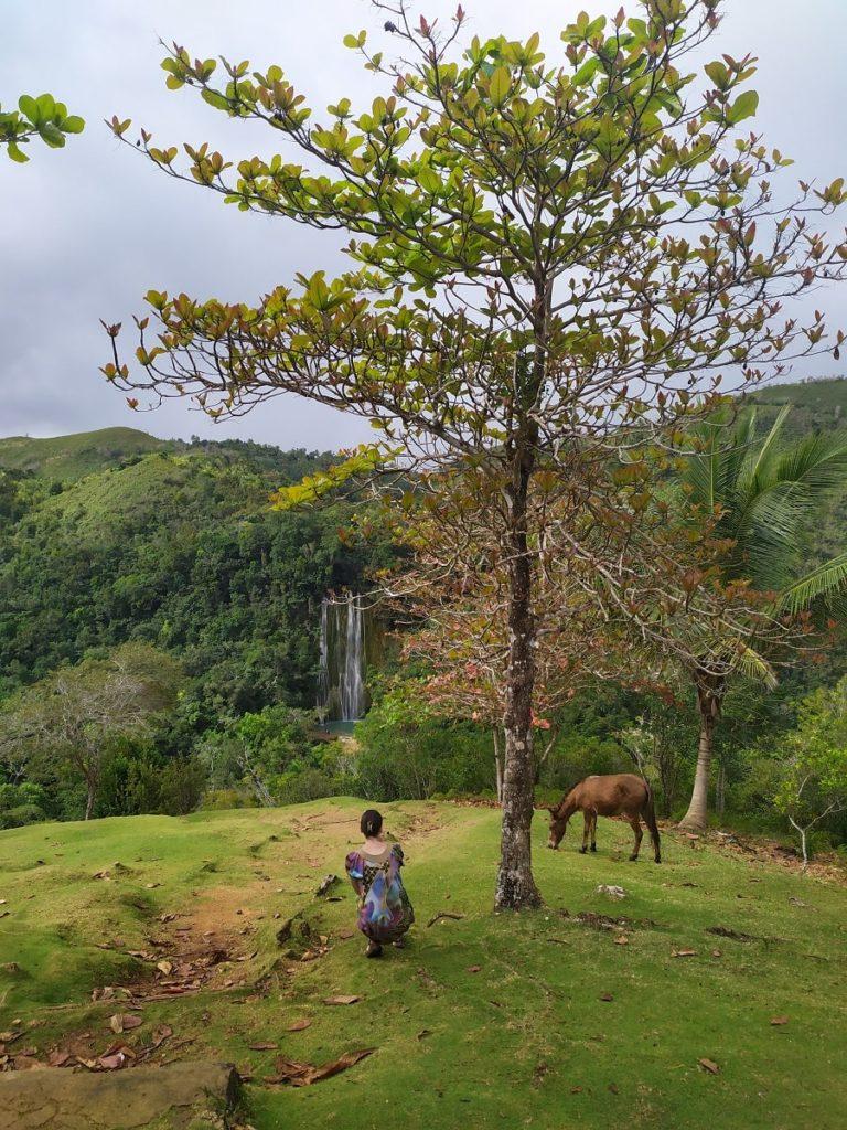 сезон и погода в доминикане