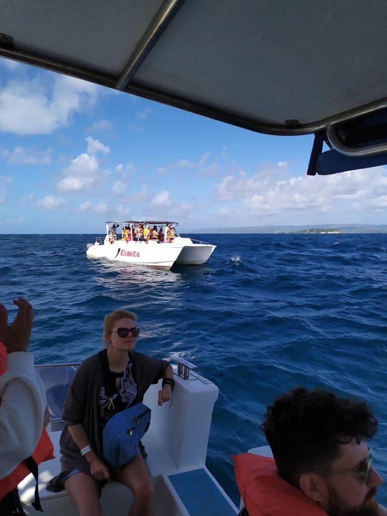 тайминг экскурсии за китами