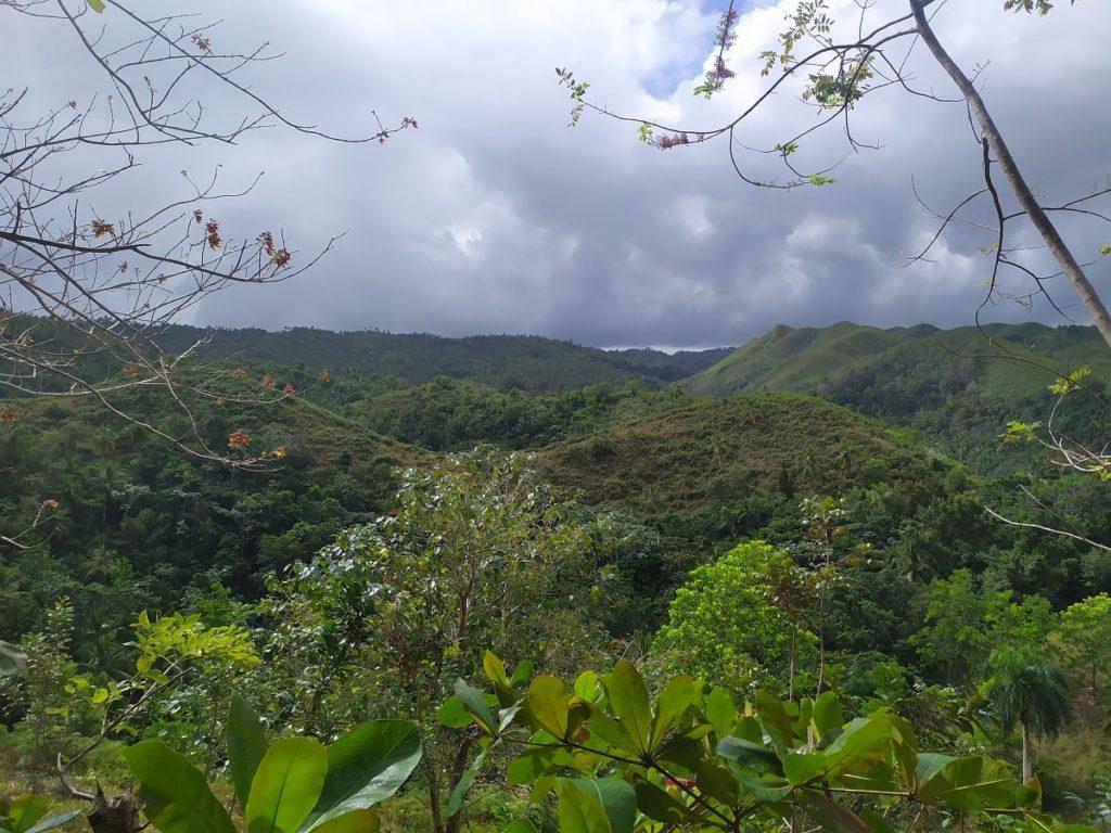 джунгли полуострова Самана