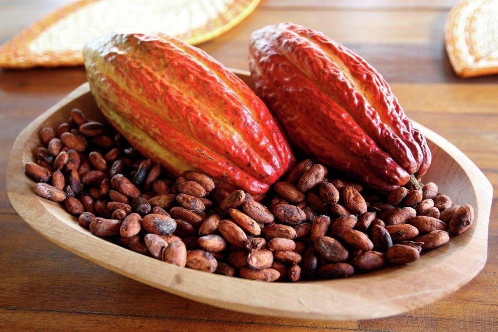 бобы какао ферментированные