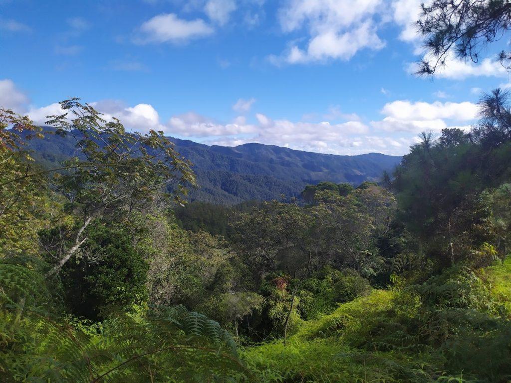 Вид на долину парка Армандо Бермудез