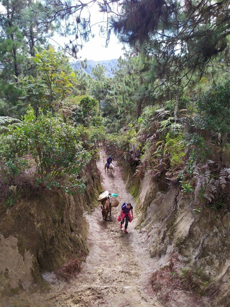 Маршрут восхождения на Пик Дуарте