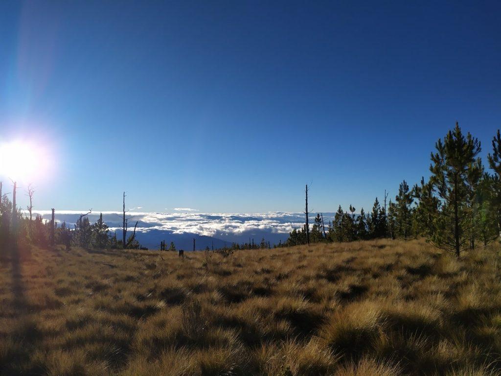 Вид с вершины над облаками Pico Duarte
