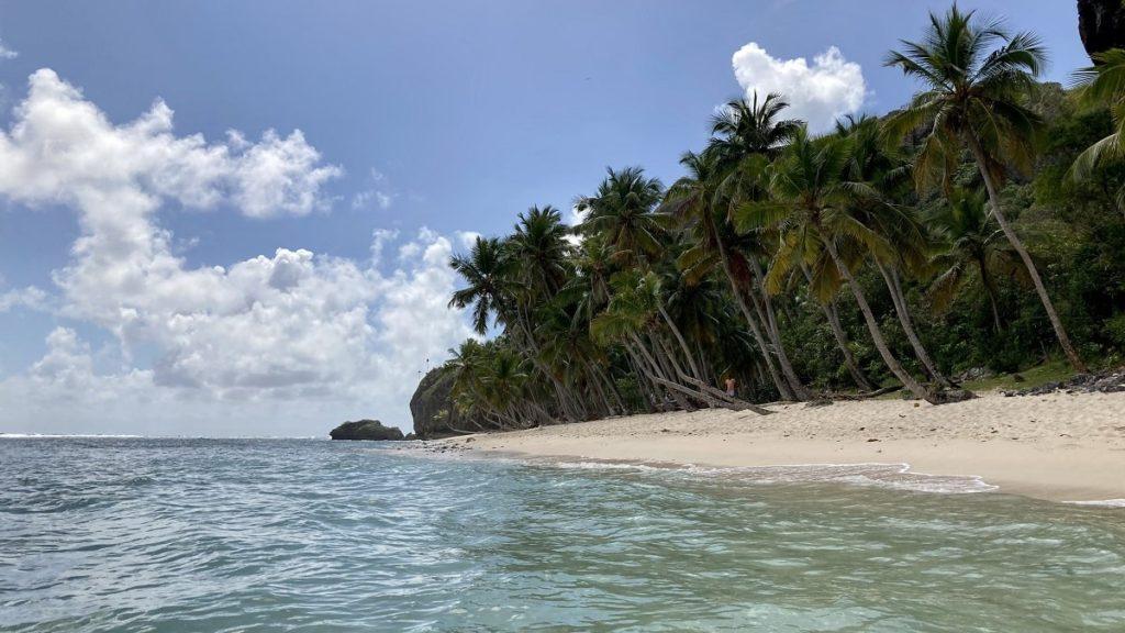 лучшее время для отдыха в доминикане